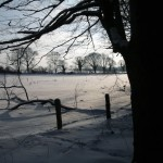 Winter View 1