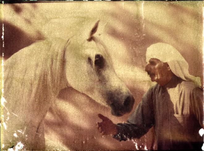 Horse-Man-Homepage